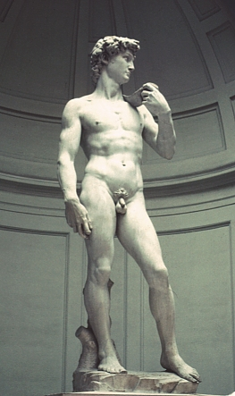 Images of Michelangelo's David, 1501-