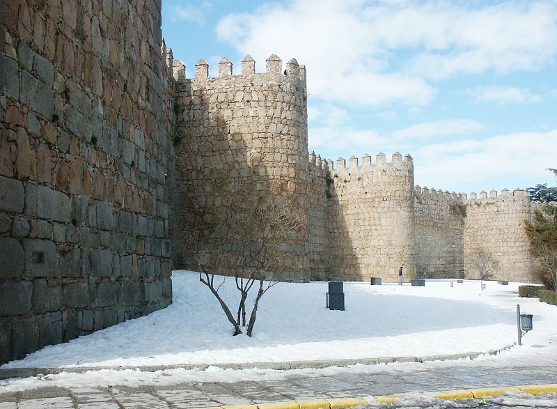 Image result for medieval walls