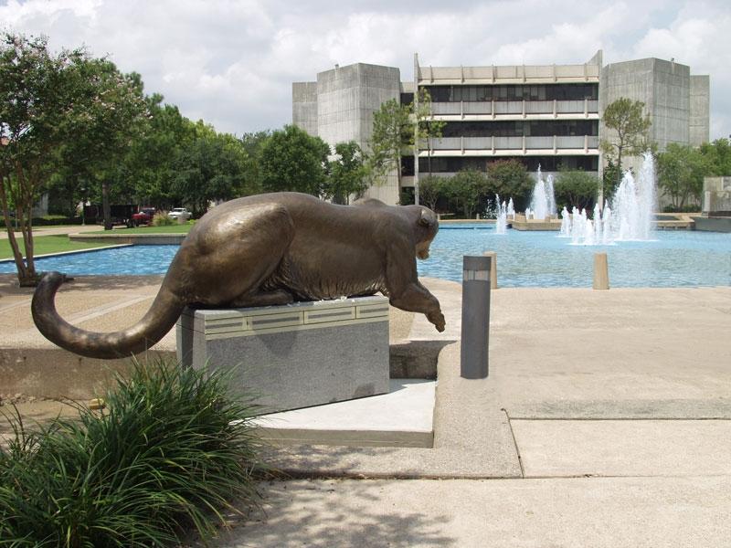 cougar dating houston texas